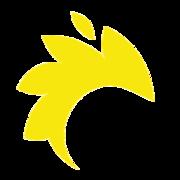 www.dinamiksoft.com